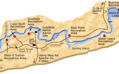 5 Tips On How to Float the Salt River in Mesa Arizona